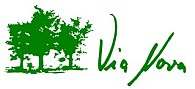 Via-Nova-Logo